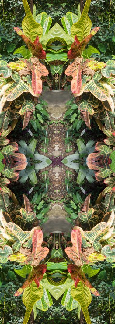 Jungle serie II32..jpg