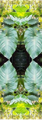 Jungle serie II34..jpg