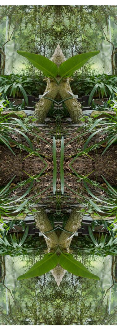 Jungle serie II19..jpg