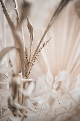 warm white, gold and beige flowers