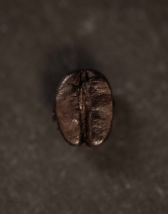 the beauty of coffee bean
