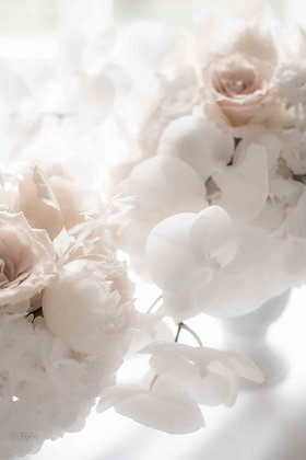 Wedding flowers white orchid