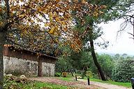 Parque Nacional Sierra de Guadarrama Excursiones, senderismo y rutas por la sierra