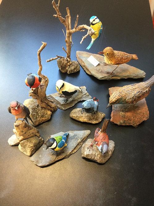 Reproducciones de aves pintadas a mano