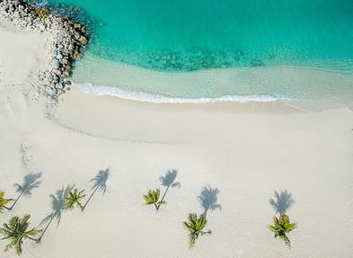 bimini sands bimini bahamas