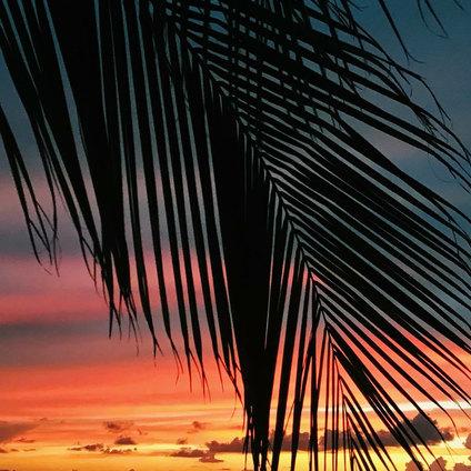 Islamorada Sunset  by Jenny Schartner