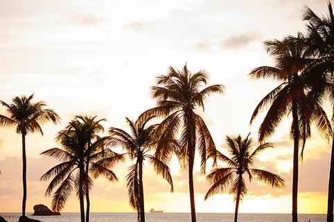St Lucian Sunset  by Jenny Schartner St Lucia