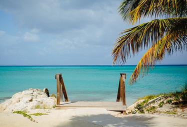 bimini beach bahamas