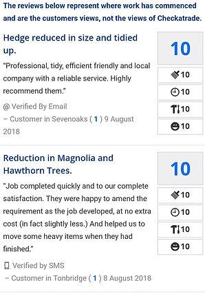 Sevenoaks Tree Care Reviews