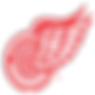 detroit-red-wings.png