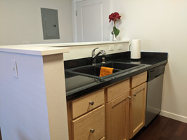 Sink and Diswasher.jpg