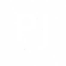 PJ_novo logo_branco.png