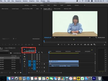 [영상편집] 초보 유튜버들도 쉽게 따라할 수 있는 컷편집, 색보정 방법(with 어도비 프리미어 프로)