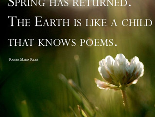 """The Poetry of Spring"""