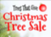 Tree-Sale-WORDS-GRAPHIC-1024x751.png