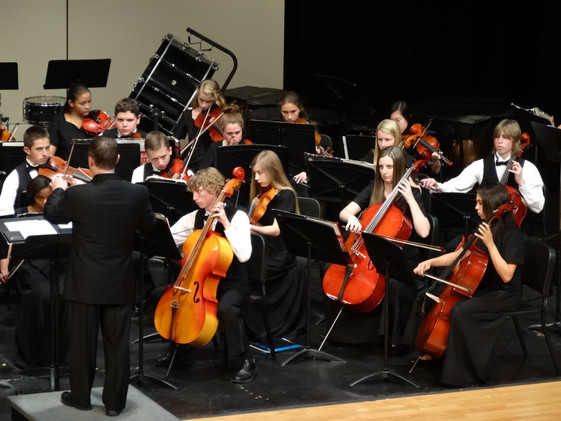 Area Orchestra Festival - March 7