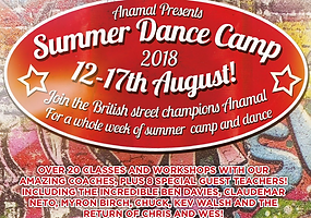Anamal Summer Dance Camp.PNG
