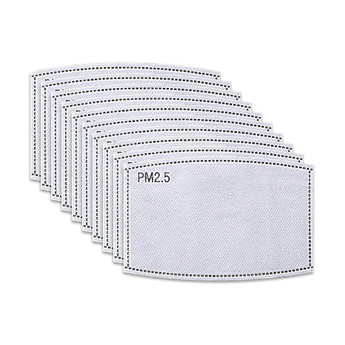 PM2.5 Filters (10 Pack)