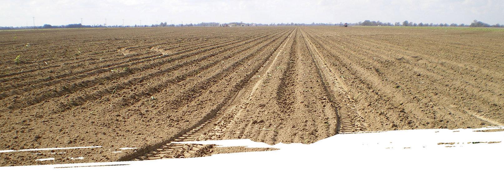 agriculturalSlider2.jpg