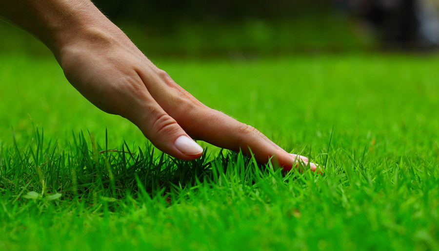 WE DO COMMERCIAL & RESIDENTIAL LAWN CARE SERVICE