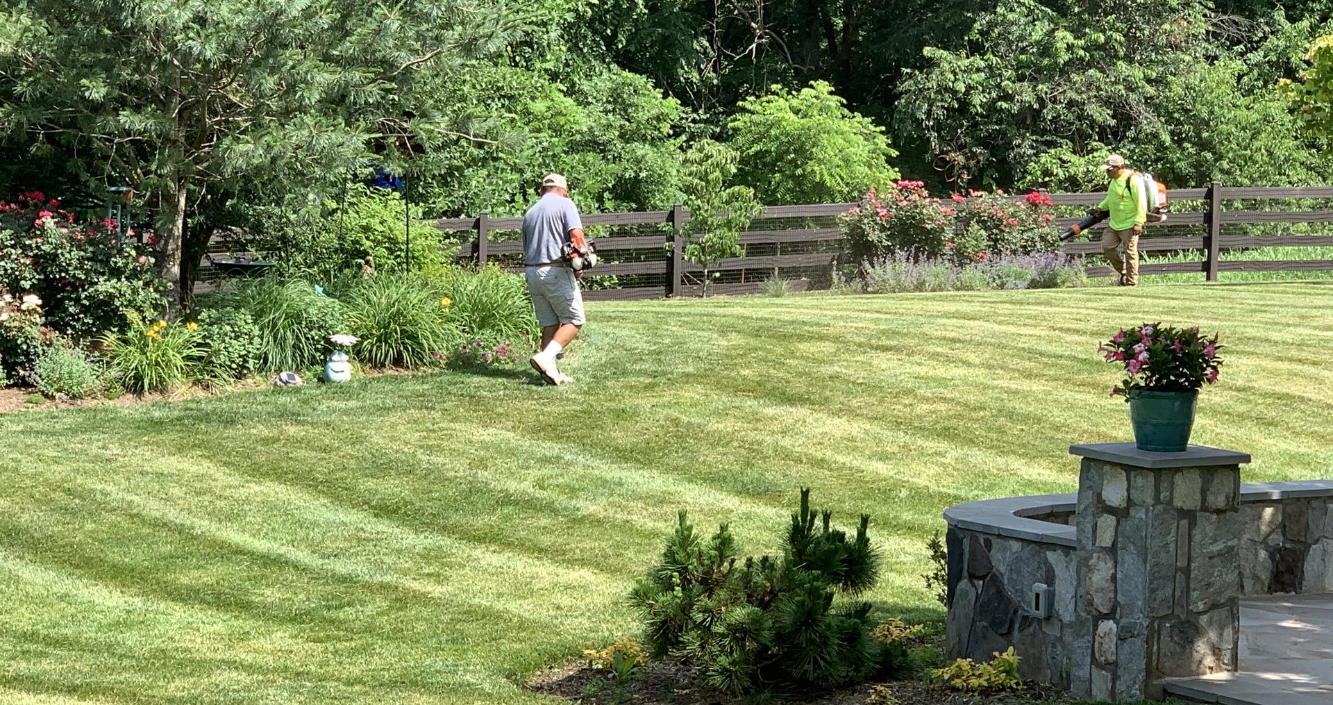 Making Beautiful your Lawn