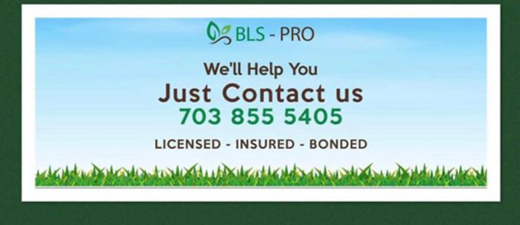 CALL OR TEXT US TODAY FOR A FREE CONSULT