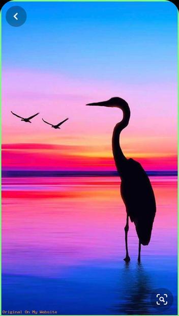 Egrid Sunset