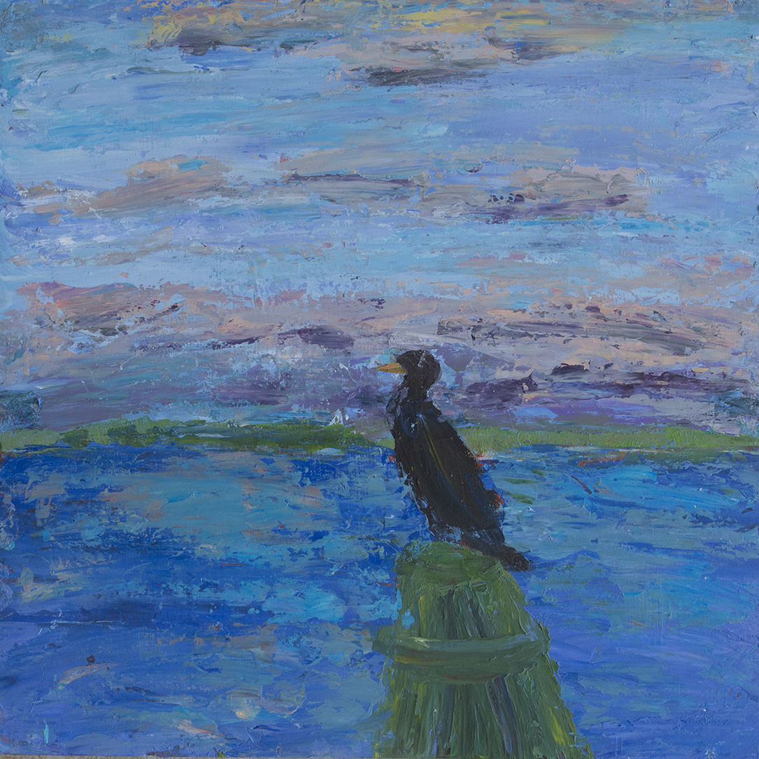 Cormorant At Twelve Oaks copy