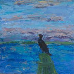 Cormorant At Twelve Oaks copy