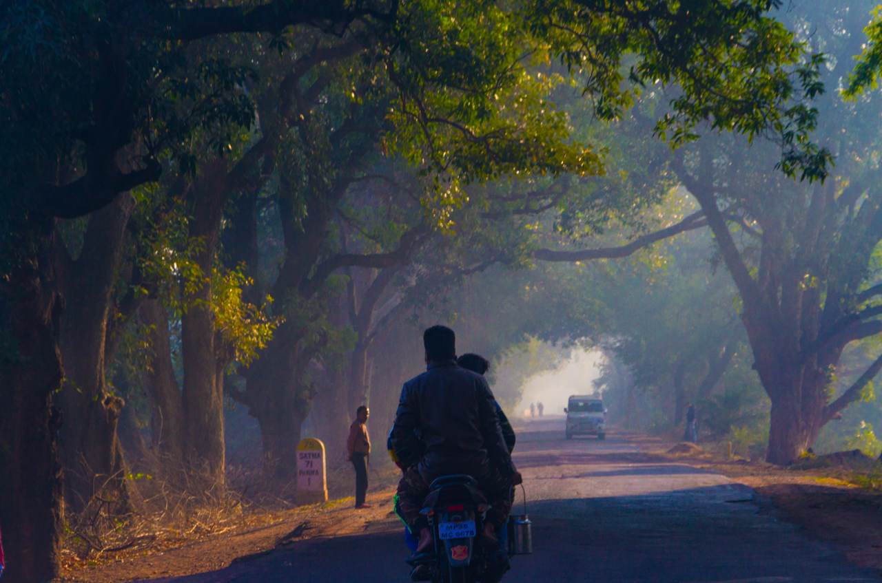 R1. Foggy morning drive