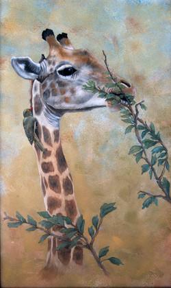 1. Carol Coleman Giraffe
