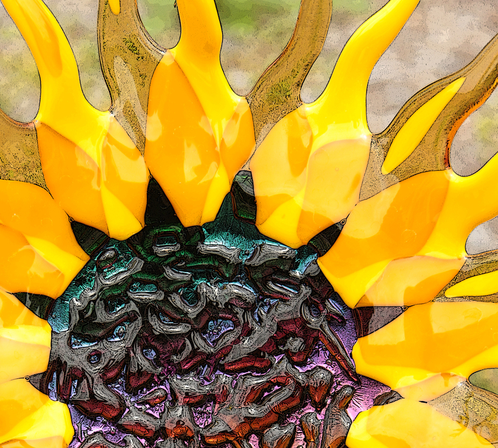 Linda Mueller 3, Sunflower
