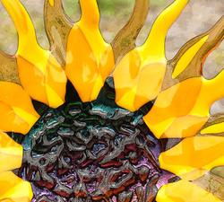 Linda Mueller 3, Sunflower