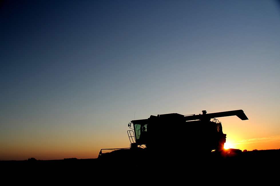 Harvest - Schumacher - Wheatland County