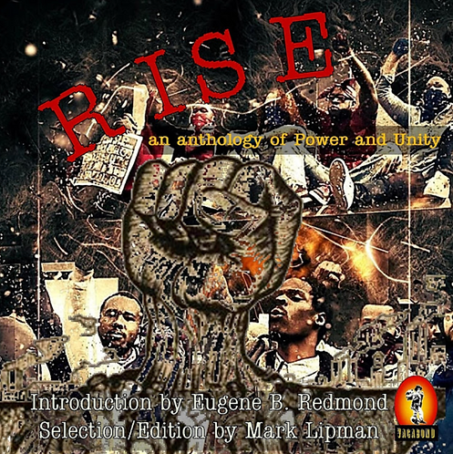 RISE An Anthology Of Power and Unity