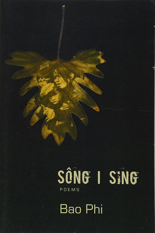 SONG l SING by Bao Phi