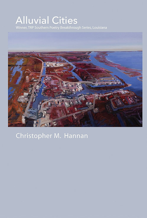 Alluvial cities by Christopher M. Hannan
