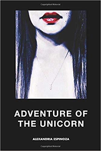 Adventure of the unicorn by Alexandria Espinoza
