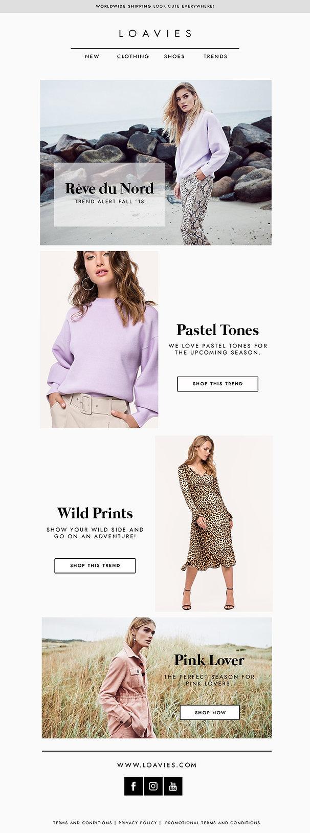 Elegant UI Design Newsletter Fashion Brand
