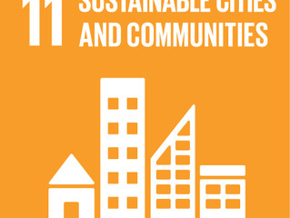 urdban sustainable goals | around 11