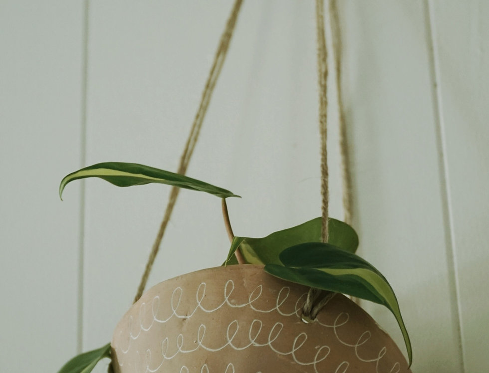 - CURLY - Pink and White Earthenware Hanging Planter