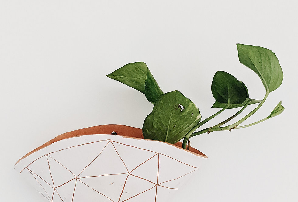 - GEOTRIANGLE - wall planter