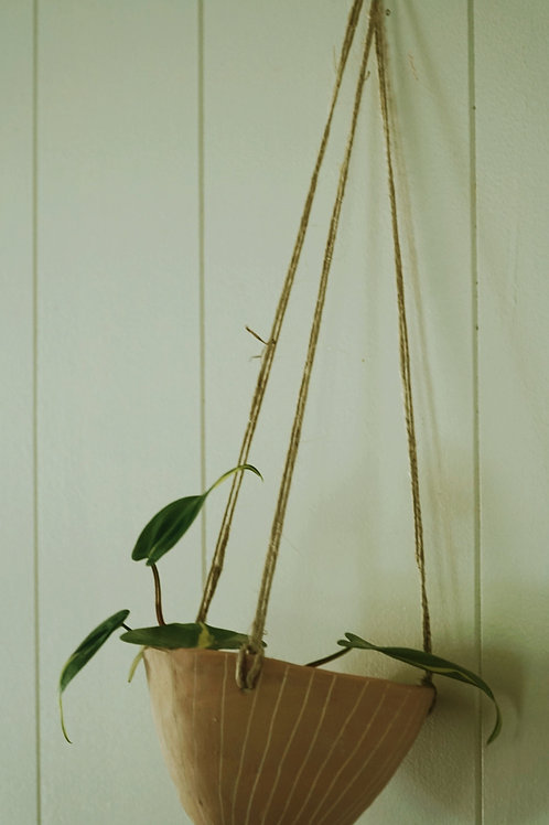 - VERTICAL LINES - Pink and White Earthenware Hanging Planters