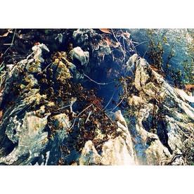 #abstractlandscape #doubleexposure #multipleexposure #filmphotography #landscape #35mm #canon #ae1 #istillshootfilm #analog #dstexture #colo