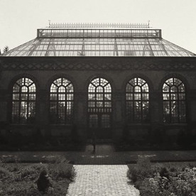 Biltmore Greenhouse 🌿🌸😍 _biltmoreestate #greenhouse #35mm #wnc #asheville #828isgreat #biltmoregreenhouse
