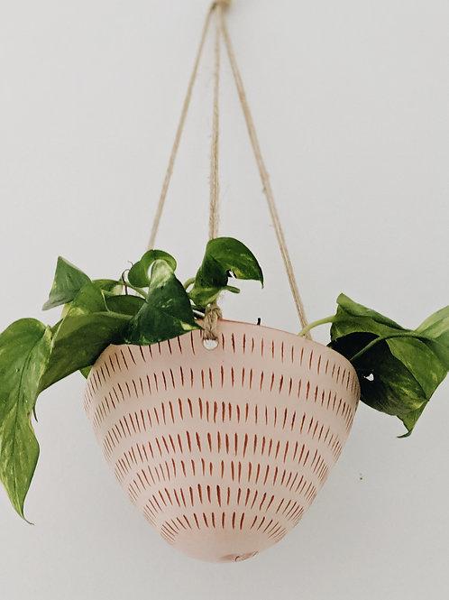 - DASH - hanging planter