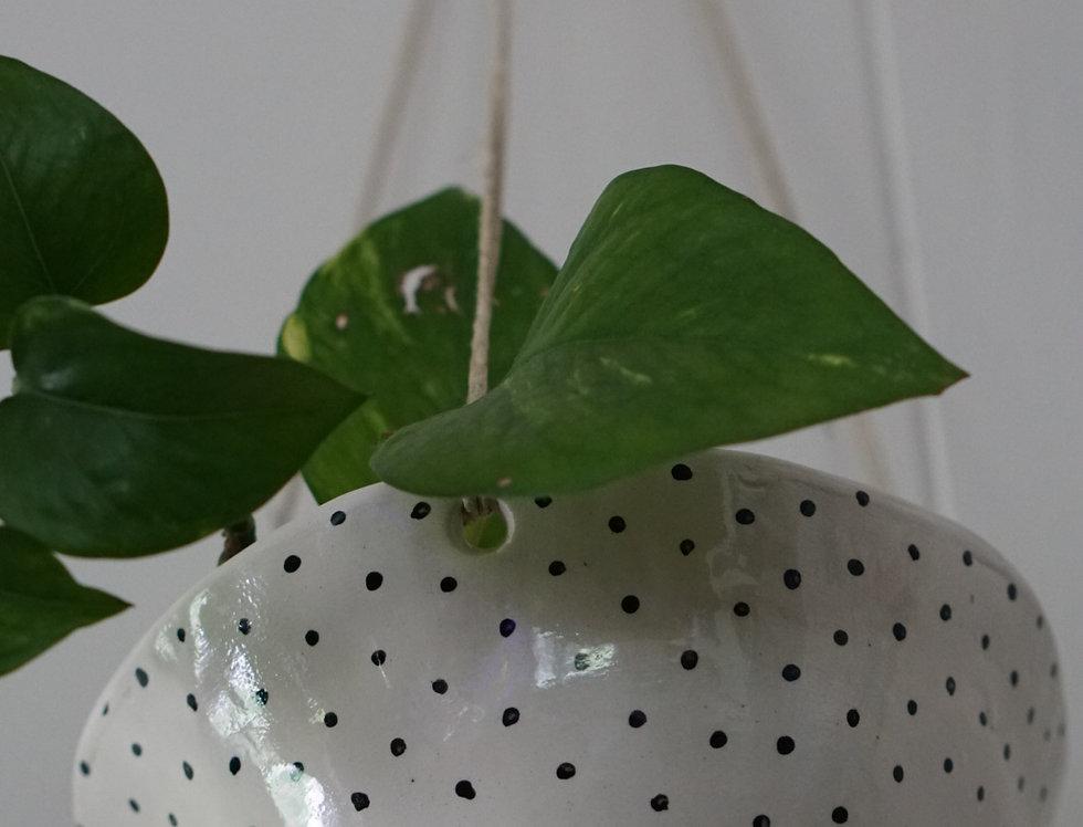 Black & White Hand-painted Polka Dot Hanging Planter