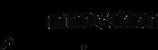 logo-officiel-IIG-480x152_edited.png