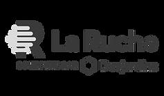 Logo_LaRuche_Desjardins_fr_noir_edited.p