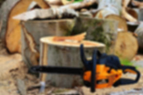 wood-3835508_640.jpg